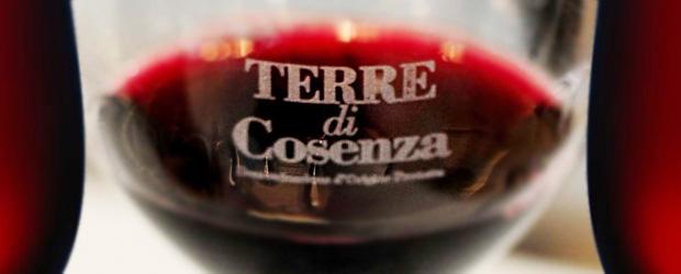 dop-bruzia-terre-di-cosenza-vinoit-wine-620x250