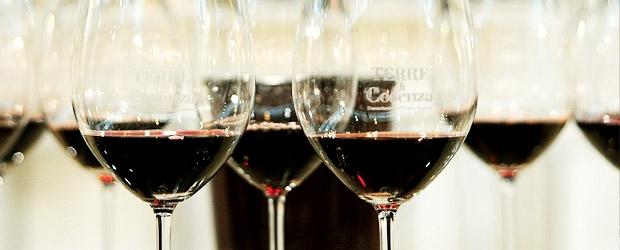 terre-di-cosenza-vino-dop-bruzia-620x250